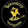 Roosters Senigallia