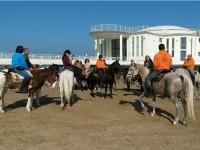 """Cavalli """"a passeggio"""" sulla Spiaggia di Velluto"""