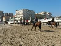 Cavalli e cavalieri sul litorale di Senigallia