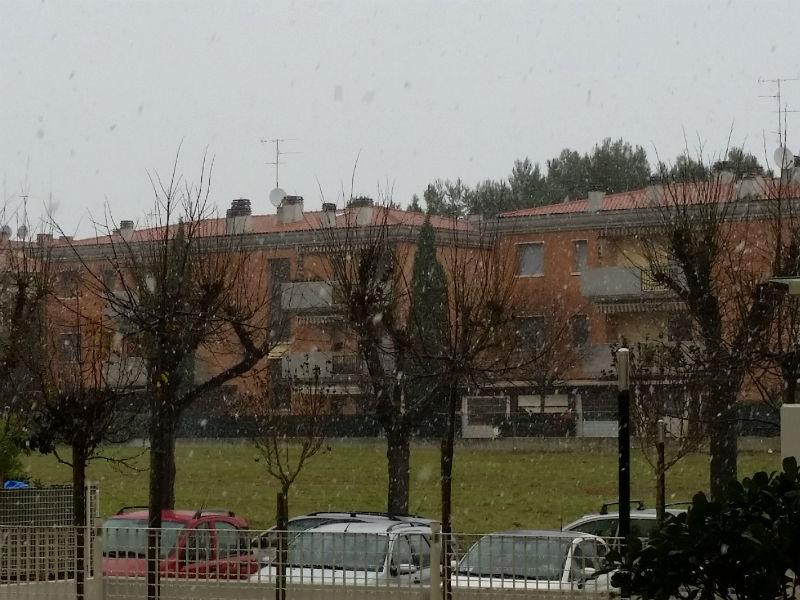 Primi fiocchi di neve su Senigallia