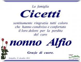 Alfio Cicetti