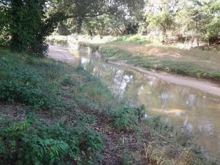Il fiume Misa di Senigallia