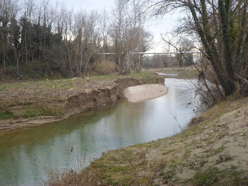 L'alveo fluviale del fiume Misa