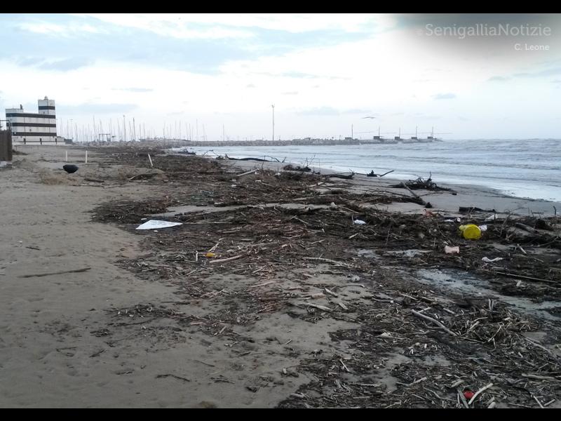 Enormi quantità di detriti sulla spiaggia di velluto dopo il maltempo del 5-6 marzo 2015 a Senigallia