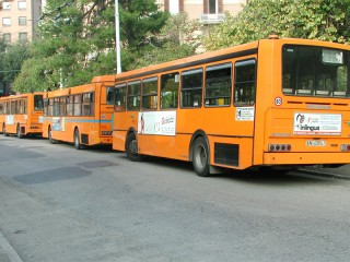 Autobus Ancona