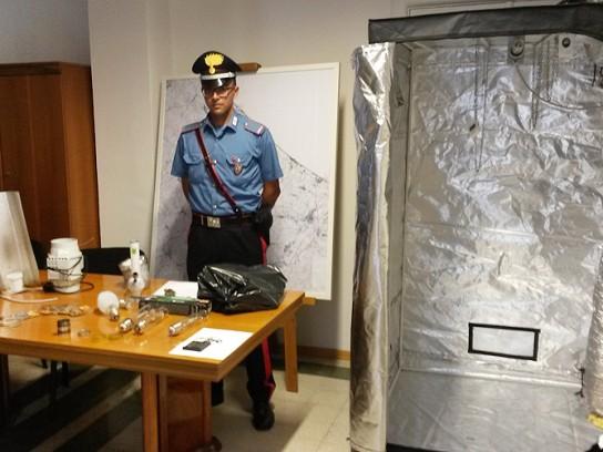 I materiali posto sotto sequestro dopo l'arresto per produzione di marijuana a Senigallia
