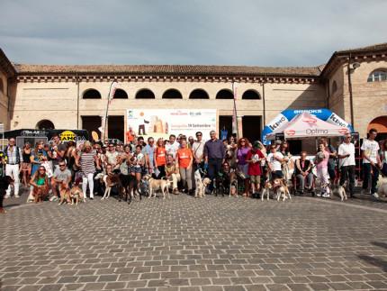 Passeggiandog 2015 a Senigallia