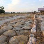 """Il """"decumanus maximus"""" del parco archeologico regionale Città Romana di Suasa gestito dal Consorzio Città Romana di Suasa"""