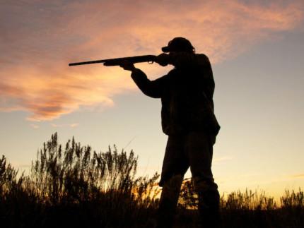 Caccia, cacciatori