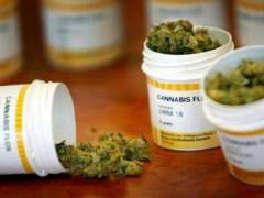 farmaci cannabinoidi, Cannabis terapeutica