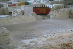 Il parco archeologico della Città Romana di Suasa