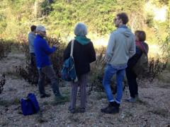 L'escursione lungo il fiume Misa organizzata dallo studio naturalistico Diatomea di Senigallia
