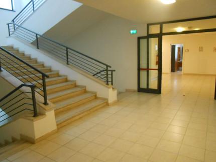 Uffici comunali, Palazzo Nuova Gioventù, Ex Gil