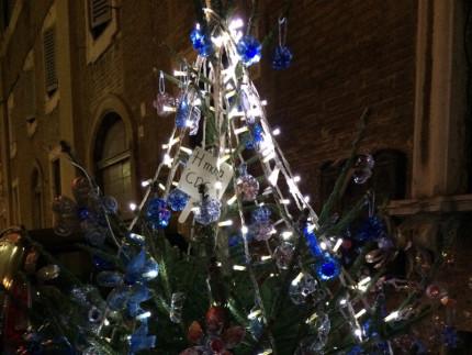 Il Servizio Sollievo (con le Cooperative Sociali H Muta e Casa della Gioventù) di Senigallia è stato uno dei protagonisti in vista del Natale per addobbare, sabato 28 novembre, via F.lli Bandiera