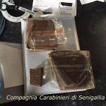 La droga sequestrata dai Carabinieri della Compagnia di Senigallia