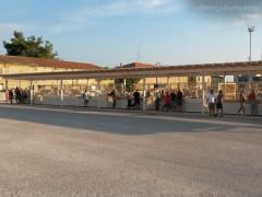 La pescheria al porto di Senigallia