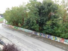 Le alberature in via Cellini nell'ottobre 2015