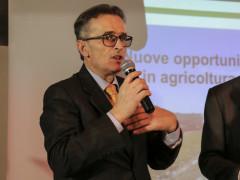 Sandrino Battistini, presidente GIO