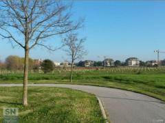 La pista ciclabile che conduce alla Cesanella