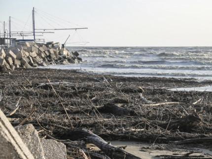 Detriti sulla spiaggia di velluto 24 marzo