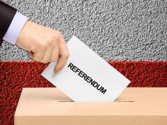 voto, referendum, votazioni, consultazione