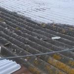 La tettoia in cemento-amianto di un capanno alla Cesanella di Senigallia