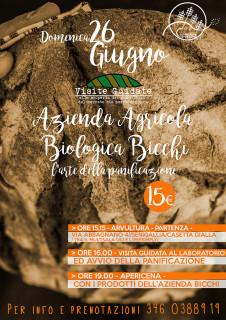 Mezza Campagna: visita guidata all'azienda agricola Bicchi - locandina