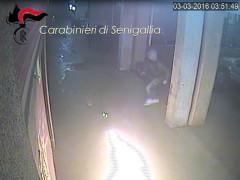 """Le immagini dell'incendio doloso appiccato al """"Quindi? Caffè"""" in via Pierelli a Senigallia"""