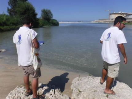 I prelievi e le analisi di Goletta Verde (Legambiente) sui fiumi, fossi delle Marche