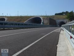 La complanare, tratto sud, aperta il 26 agosto 2016 (direzione nord). Le gallerie dell'autostrada A14 e, a destra,quella della complanare