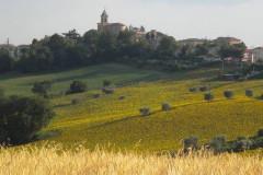 Il Comune di Barbara e il suo territorio nell'entroterra di Senigallia (Valmisa)