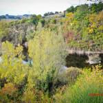 L'oasi di san Gaudenzio a Senigallia