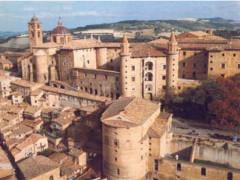 Urbino, Università di Urbino