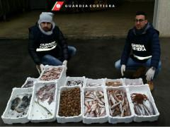 Guardia Costiera, sequestro prodotti ittici