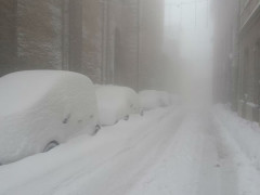 La neve caduta ad Arcevia