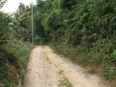 strade vicinali, strade di campagna