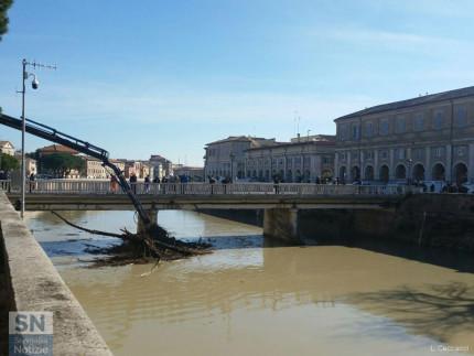 Lavori di pulizia del letto del fiume Misa a Senigallia, sotto i piloni del ponte Garibaldi