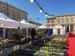 Il mercato europeo ambulante a Senigallia, edizione 2017