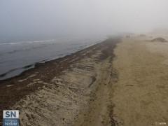 I detriti e rifiuti depositati sulla spiaggia di Senigallia