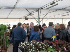 Mostra-evento del Movimento Artistico Introvisione a Casine di Ostra - foto di Luigino Priori