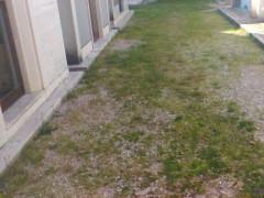 Cimitero dI Roncitelli