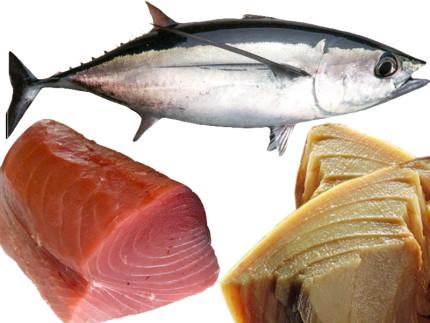 tonno, pesce, prodotti ittici