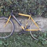 La bici abbandonata in zona Saline a Senigallia