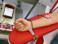 donazione di sangue, donatori, avis, trasfusione, sanità