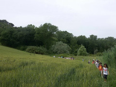 I ragazzi della scuola Rodari a lezione di tutela dell'ambiente grazie a Legambiente e Diatomea alla Selva di Montedoro di Senigallia