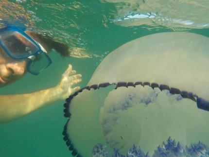 selfie con medusa al largo del Ciarnin