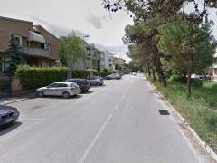 viale dei Pini a Senigallia