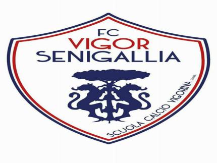 FC Vigor Senigallia-Logo