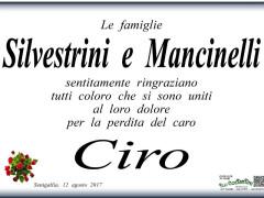 Partecipazione dolore famiglia Silvestrini-Mancinelli