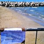 cartello e recinzione di protezione per il fenicottero visto a Senigallia